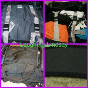 Tom Bihn Travel Bag